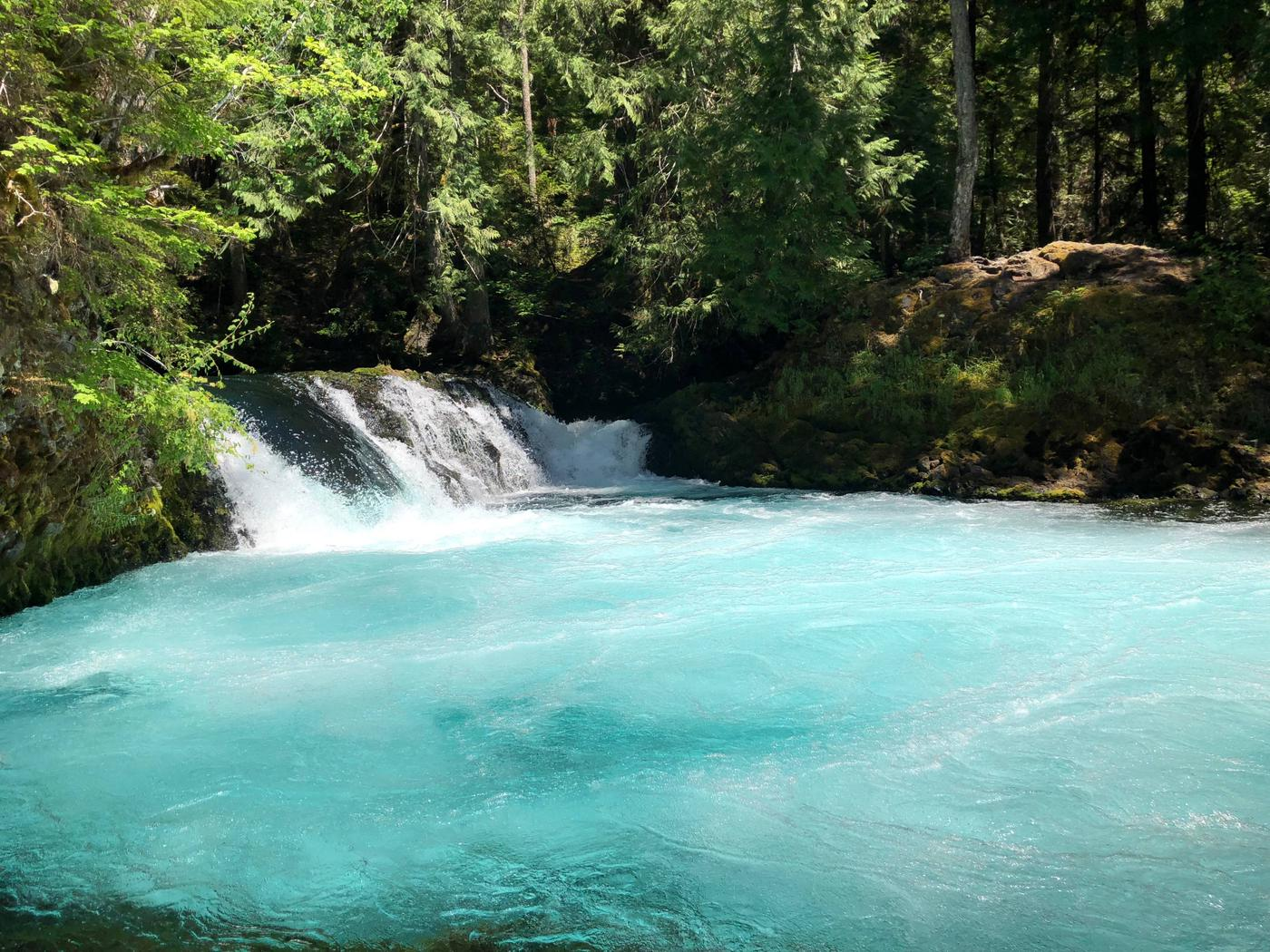 The McKenzie River, Willamette National Forest