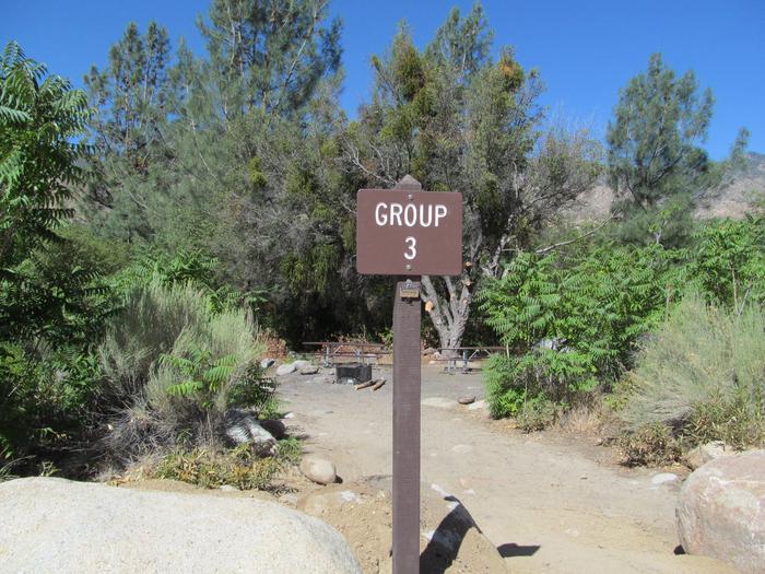 Thunderbird GroupThunderbird Group 3