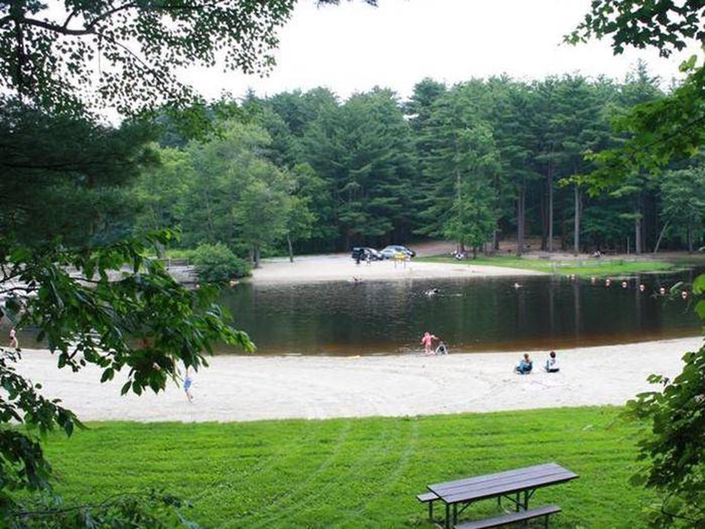 View looking over both sandy swim beaches with green lawns, parking lot and picnic tables in background.Peaceful swim and picnic grove areas with ample parking and grills provided.  Pack your picnic and enjoy your park.