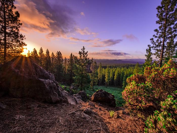 Preview photo of Deschutes National Forest