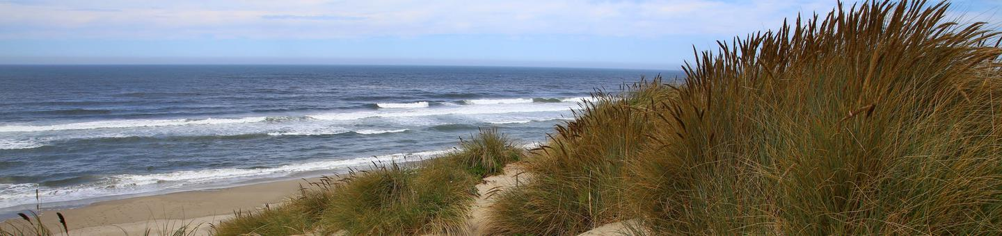 Oregon Dunes, Siuslaw National Forest
