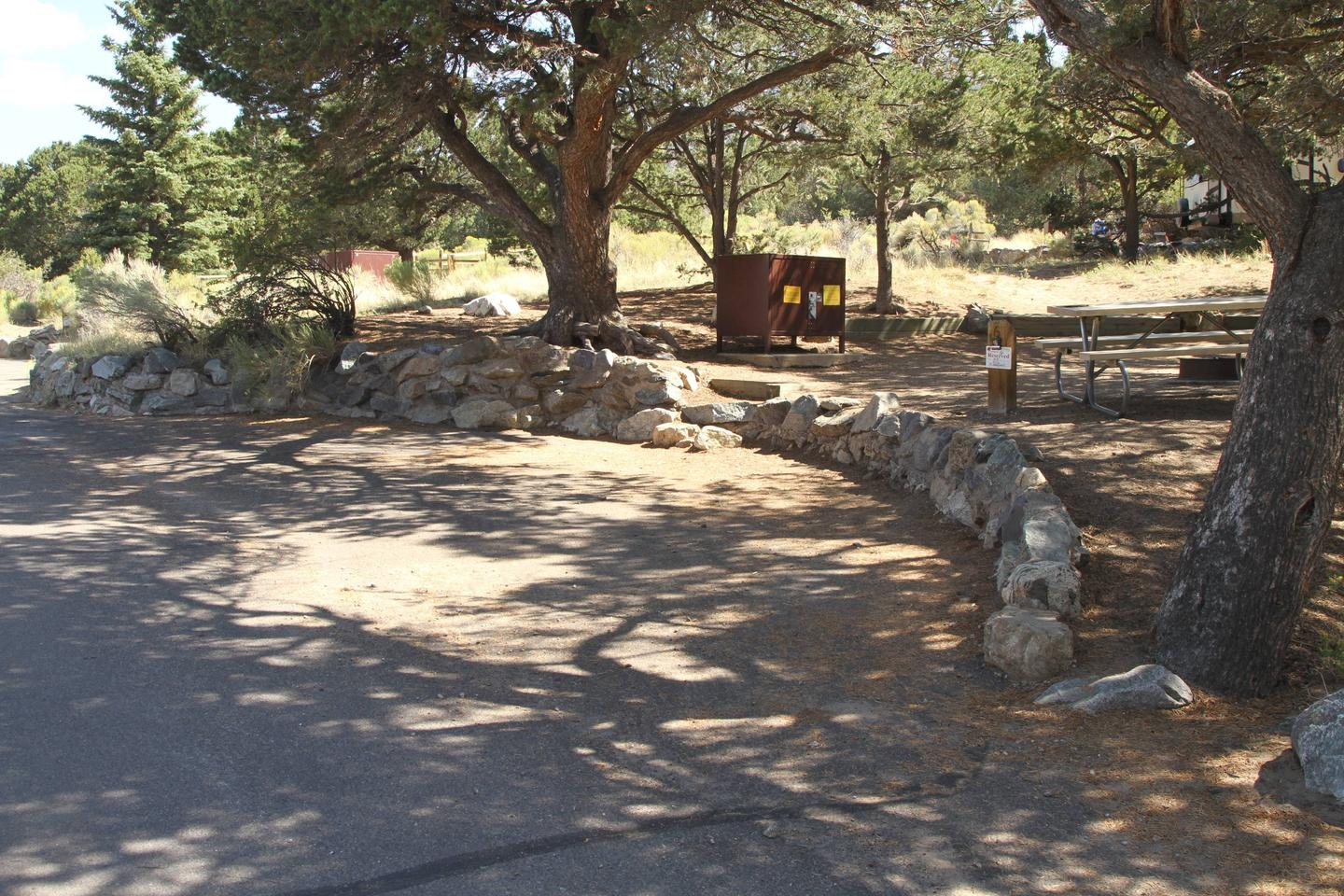 Site 6, Pinon Flats Campground