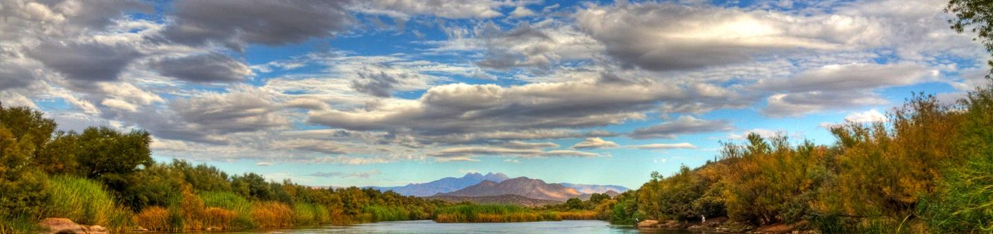 Salt River, Tonto National Forest