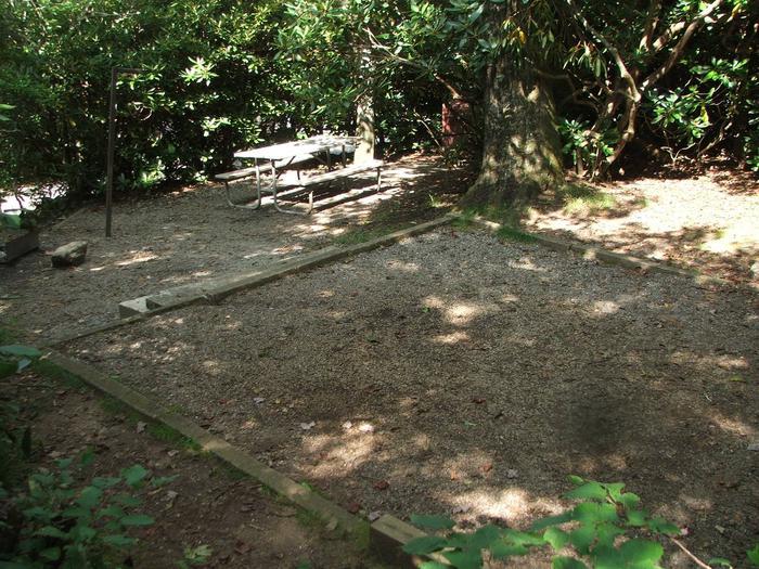 D Loop Site 10 - Tent Nonelectric