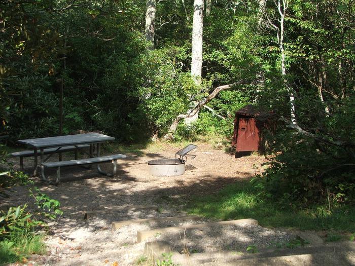 D Loop Site 11 - Tent Nonelectric