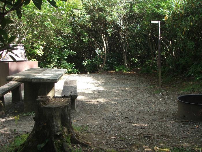 D Loop Site 14 - Tent Nonelectric