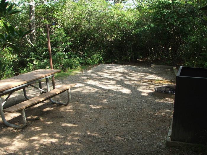 D Loop Site 15 - Tent Nonelectric