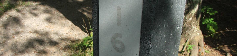 D Loop Site 16 - Tent Nonelectric