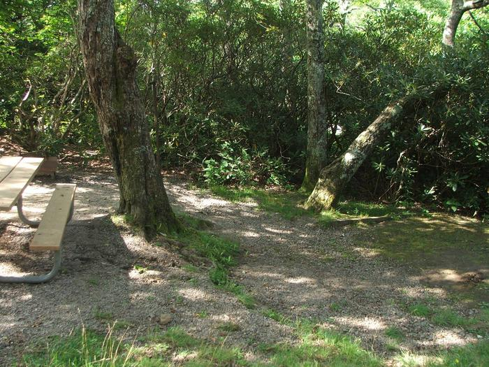 D Loop Site 17 - Tent Nonelectric