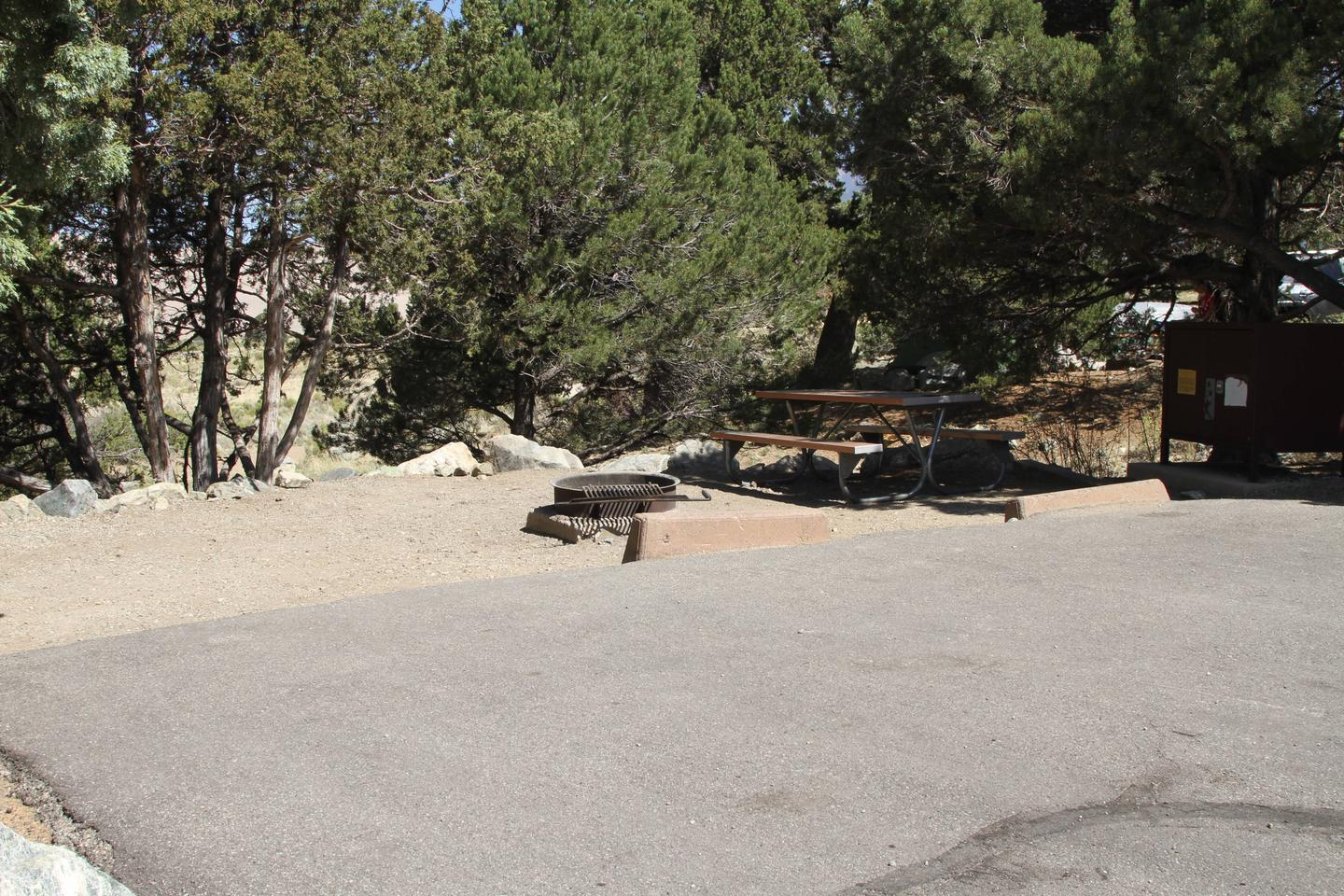 Site #30, Pinon Flats Campground