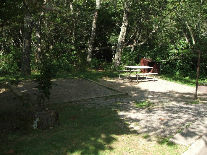 D Loop Site 21 - Tent Nonelectric
