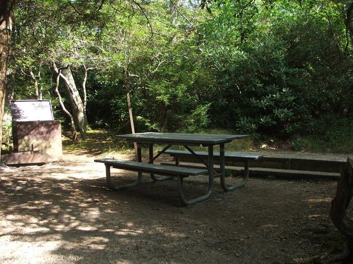 D Loop Site 23 - Tent Nonelectric