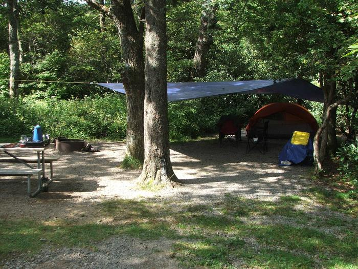 D Loop Site 24 - Tent Nonelectric
