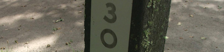 D Loop Site 30 - Tent Nonelectric