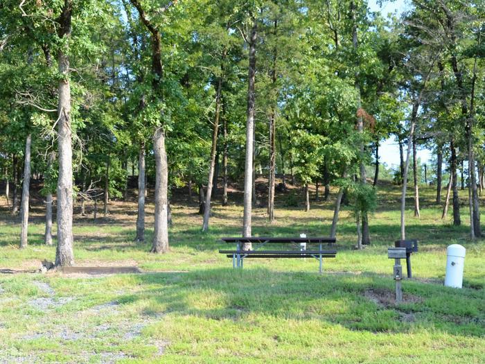 De Queen Lake Bellah Mine Park Campsite # 2Campsite #2
