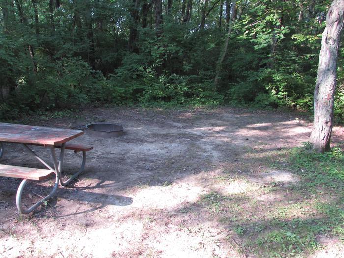 Campsite 02