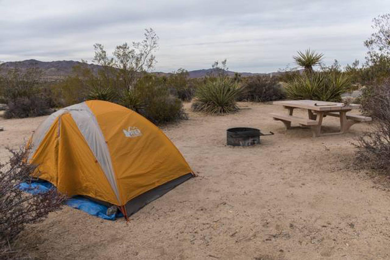 Cottonwood Site A-1 CampgroundBeautiful views