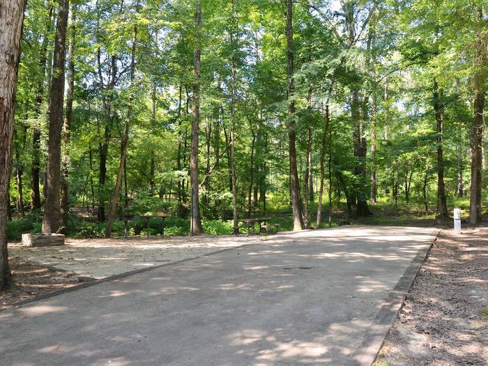 Gillham Lake Little Coon Creek Park Campsite # 1Campsite #1