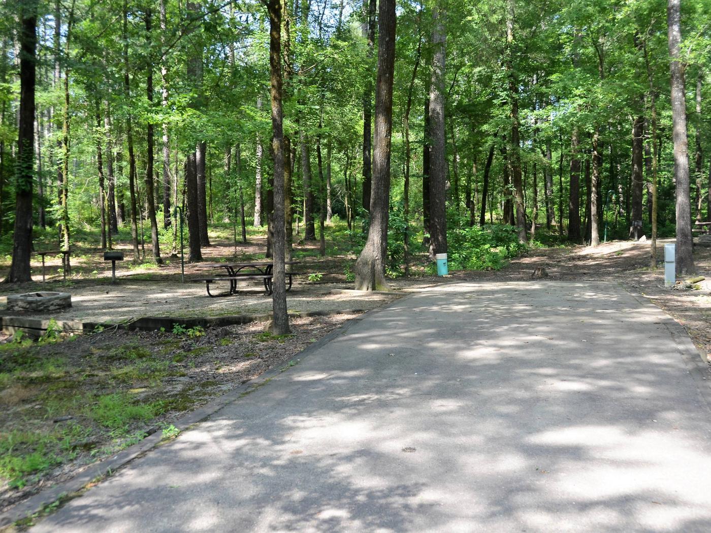 Gillham Lake Little Coon Creek Park Campsite # 3Campsite #3