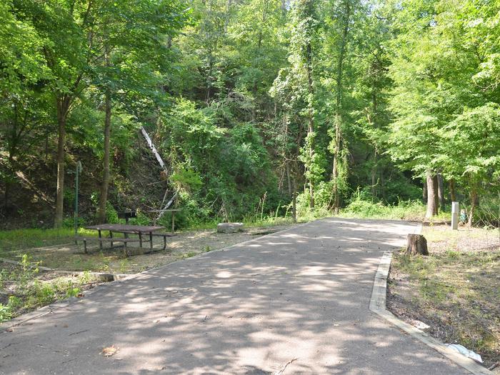 Gillham Lake Little Coon Creek Park Campsite # 6Campsite #6
