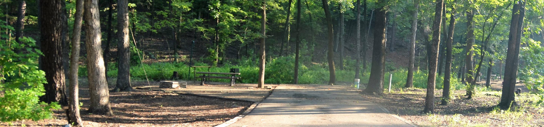 Gillham Lake Little Coon Creek Park Campsite # 8Campsite #8
