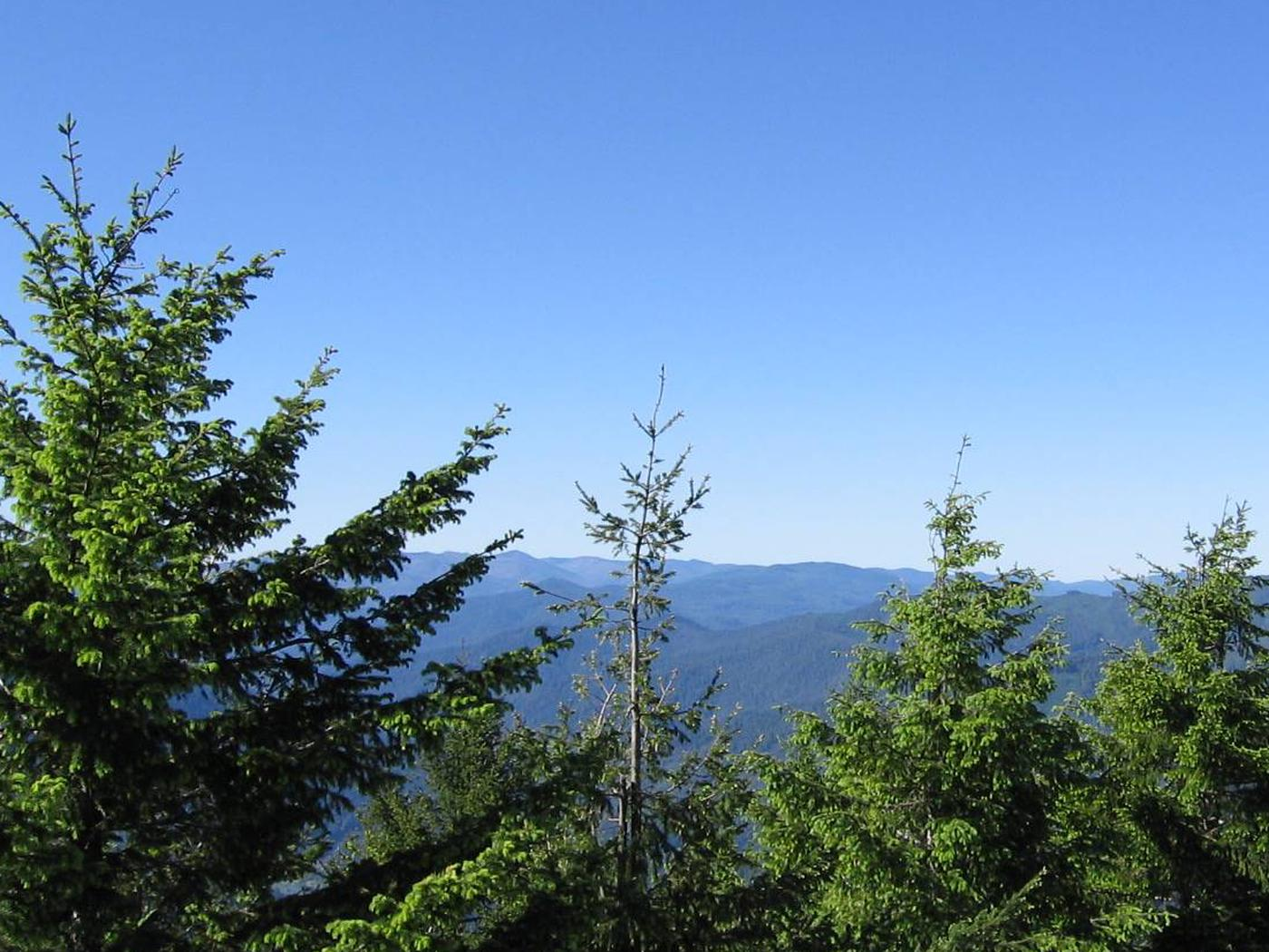 View from Bald Knob Lookout