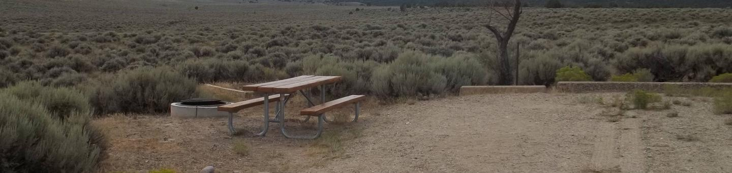 Parking location with a picnic table and a fire pit with a grill grate off to the side.Antelope Flat Campground: Site 17
