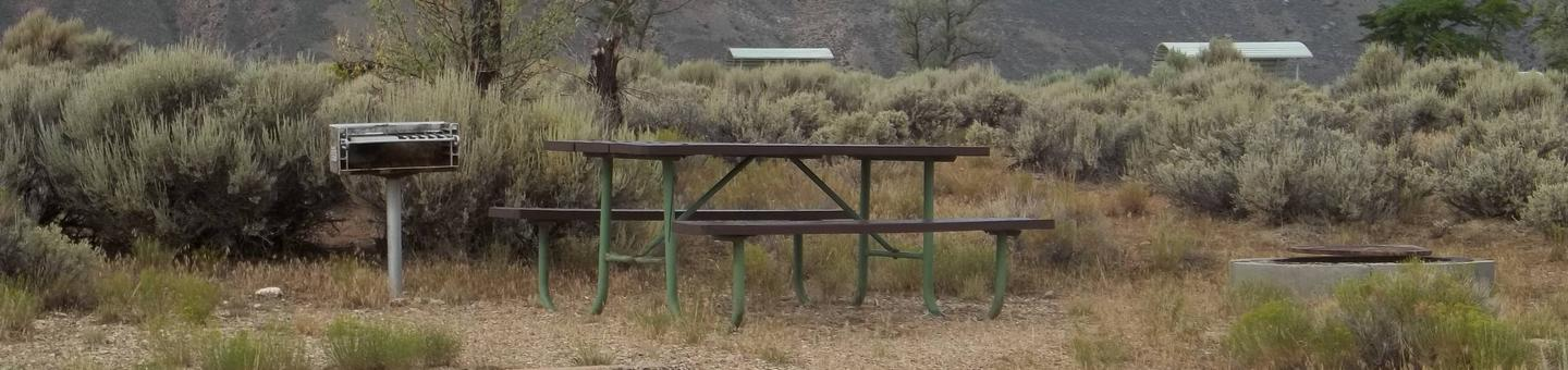 Picnic table with a grill on one side and a fire pit on the other. Sagebrush and other picnic table shelters can be seen in the background.Antelope Flat Campground: Site 19