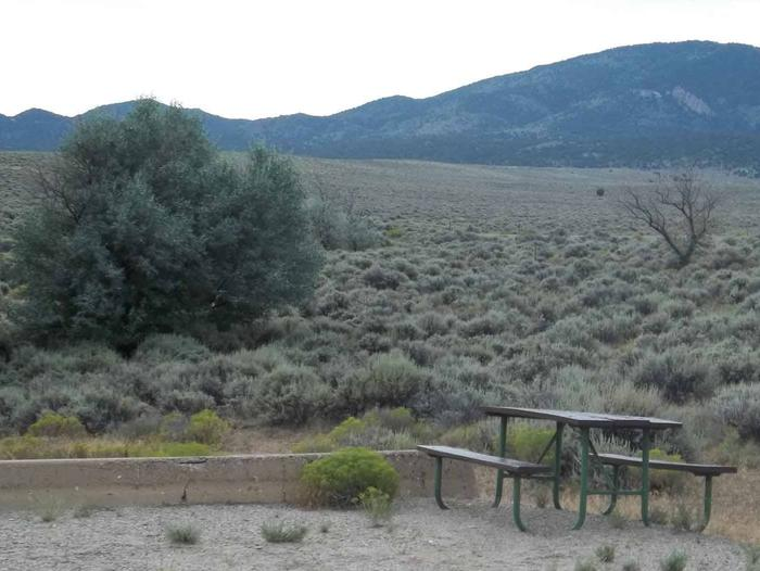 Picnic table at the end of a sandy parking area with sagebrush and a bushy tree in the backgroundAntelope Flat Campground: Site 20