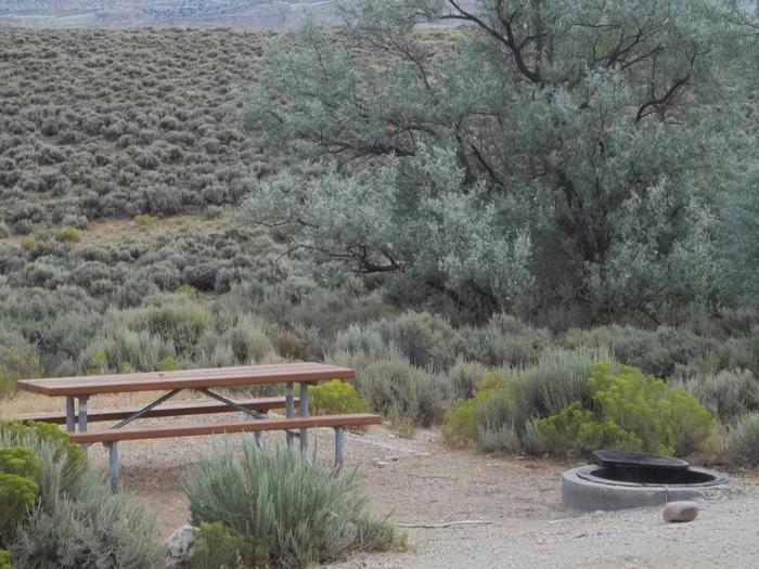 Picnic table in a sandy area with a fire pit near by. Sagebrush surrounds the picnic area.Antelope Flat Campground: Site 22