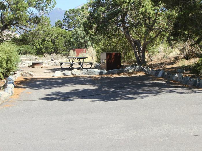 Site #43, Pinon Flats Campground