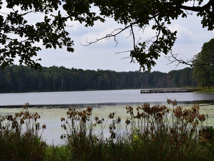 Preview photo of Pinewoods Lake Rec Area
