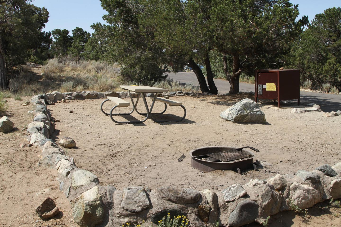 Site #5, Pinon Flats Campground