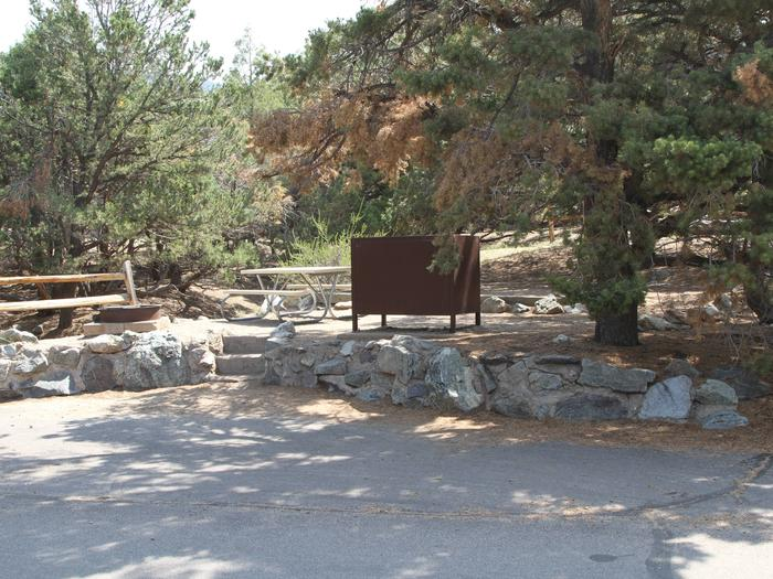 Site #13, Pinon Flats Campground