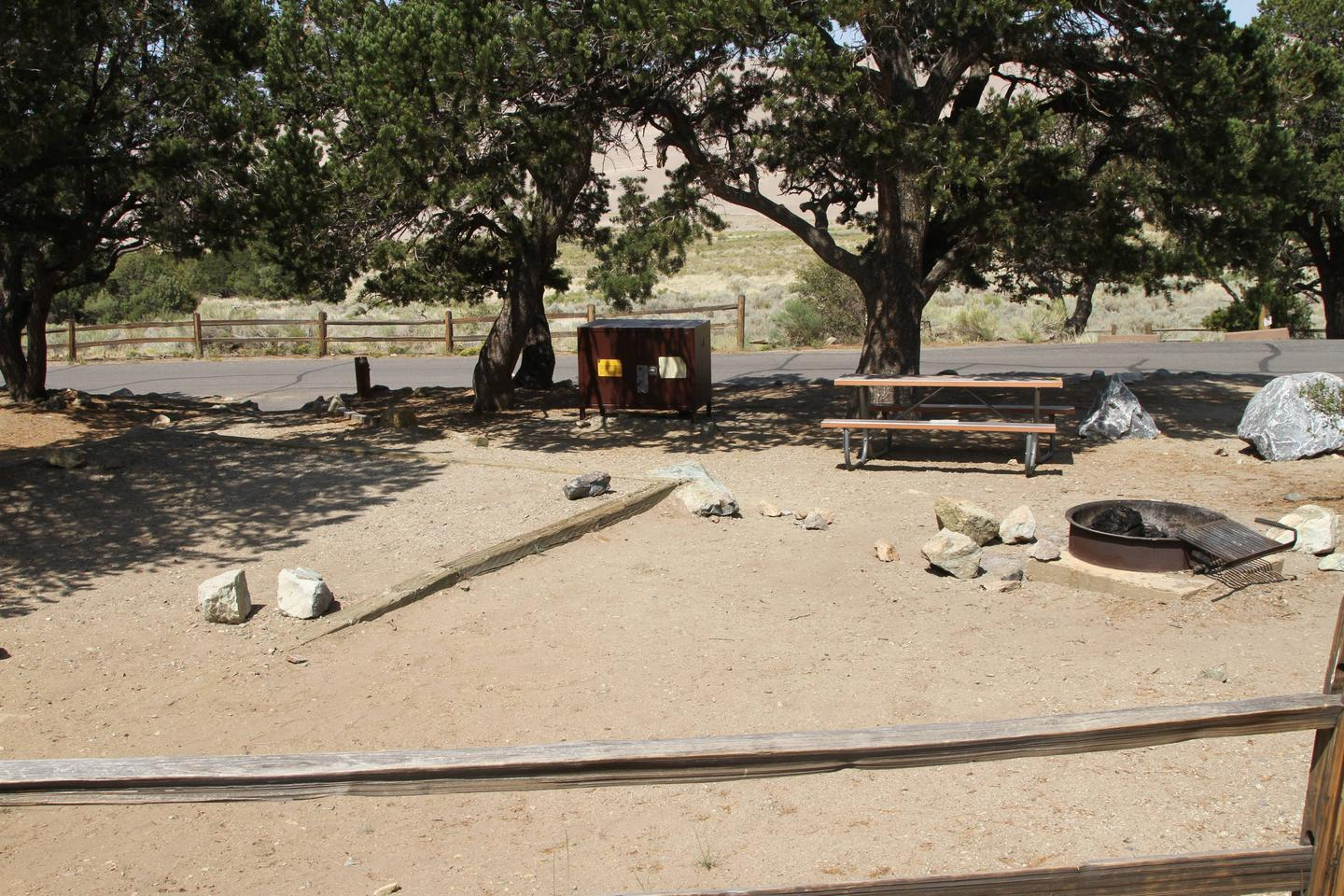 Back view of Site #23 designated tent pad, fire ring, picnic table and bear box. Pine trees provide mild shade in the background.Site #23, Pinon Flats Campground