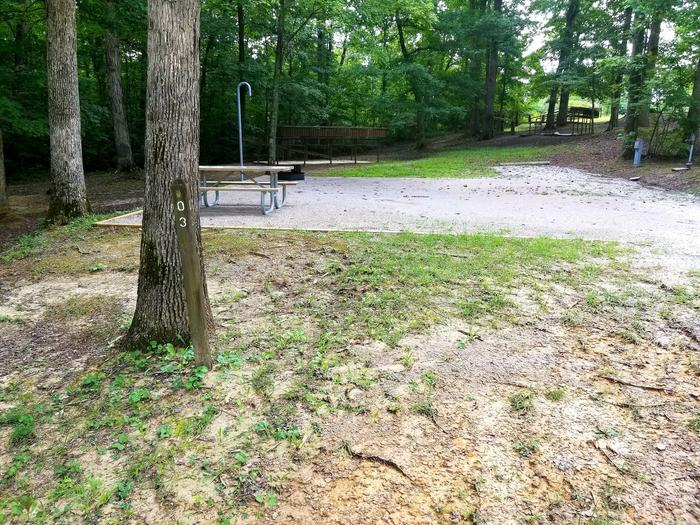 Gravel tent pad with picnic table and lantern pole behind tree.Site 3 Bear Creek Horse Camp