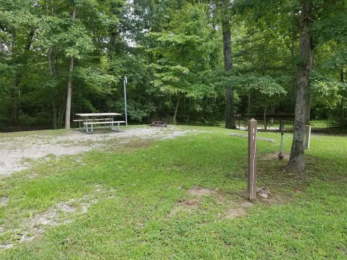 Picnic table sits on gravel tent pad near woodline of campsite.Site 11 Bear Creek Horse Camp
