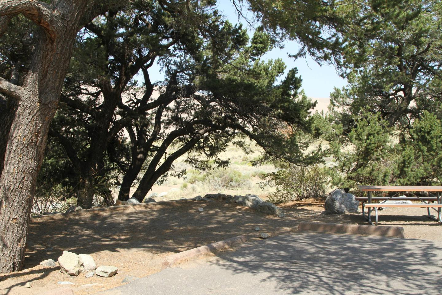 Site #28, Pinon Flats Campground