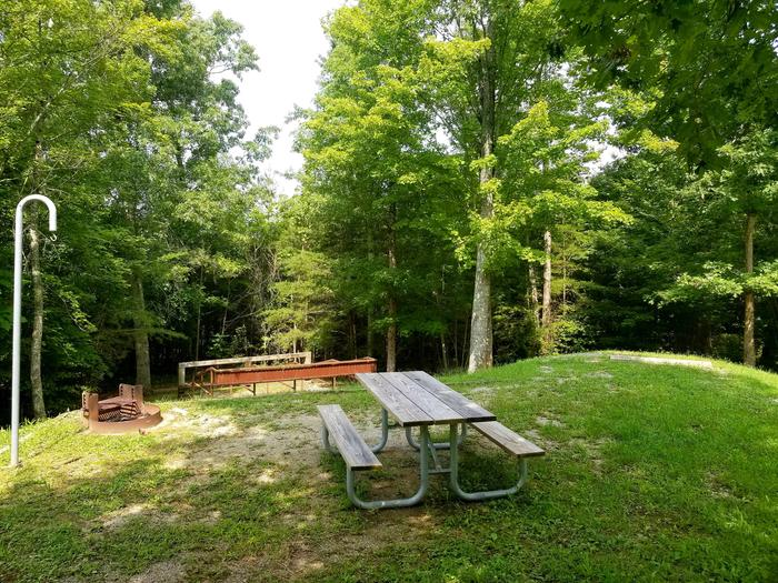 Picnic table sits on gravel tent pad with horse corral near wood line in background.Site 15 Bear Creek Horse Camp