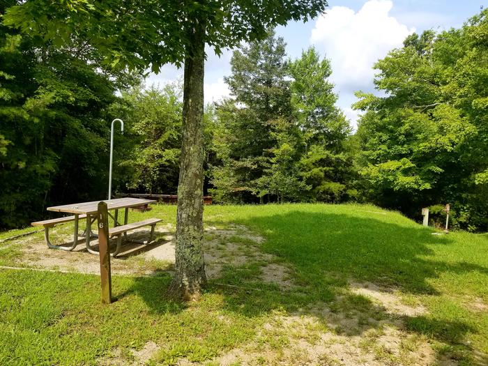 Tree shades grassy tent pad with picnic table nearby.Site 16 Bear Creek Horse Camp