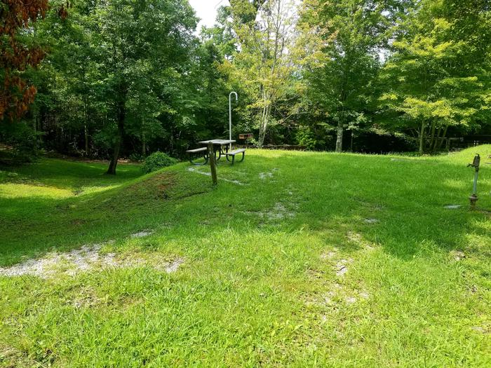Grassy parking pad leads to grassy tent pad with picnic table.Site 19 Bear Creek Horse Camp
