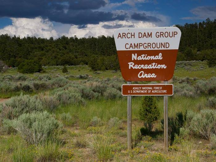 Sign for the group camground area in a location with green grasses, sagebrush, and pine trees in the background. Arch Dam Group Campground Sign
