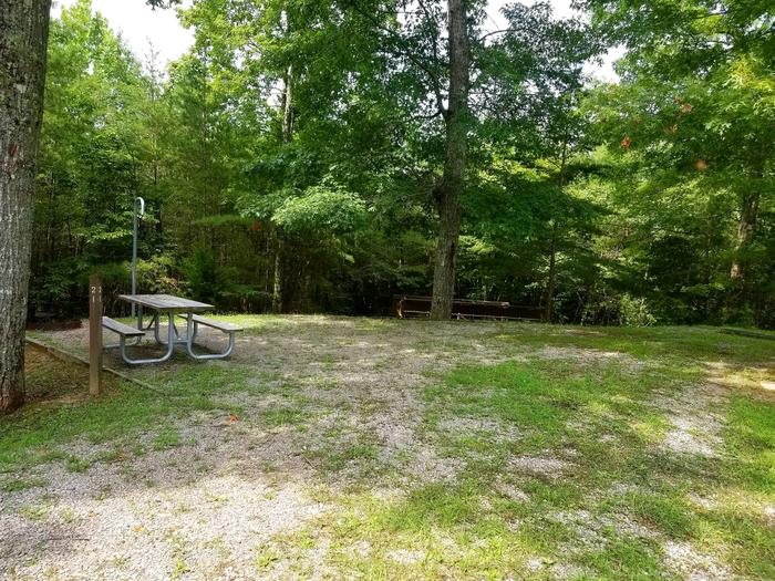 Picnic table sits on gravel tent pad with a big tree in background.Site 21 Bear Creek Horse Camp