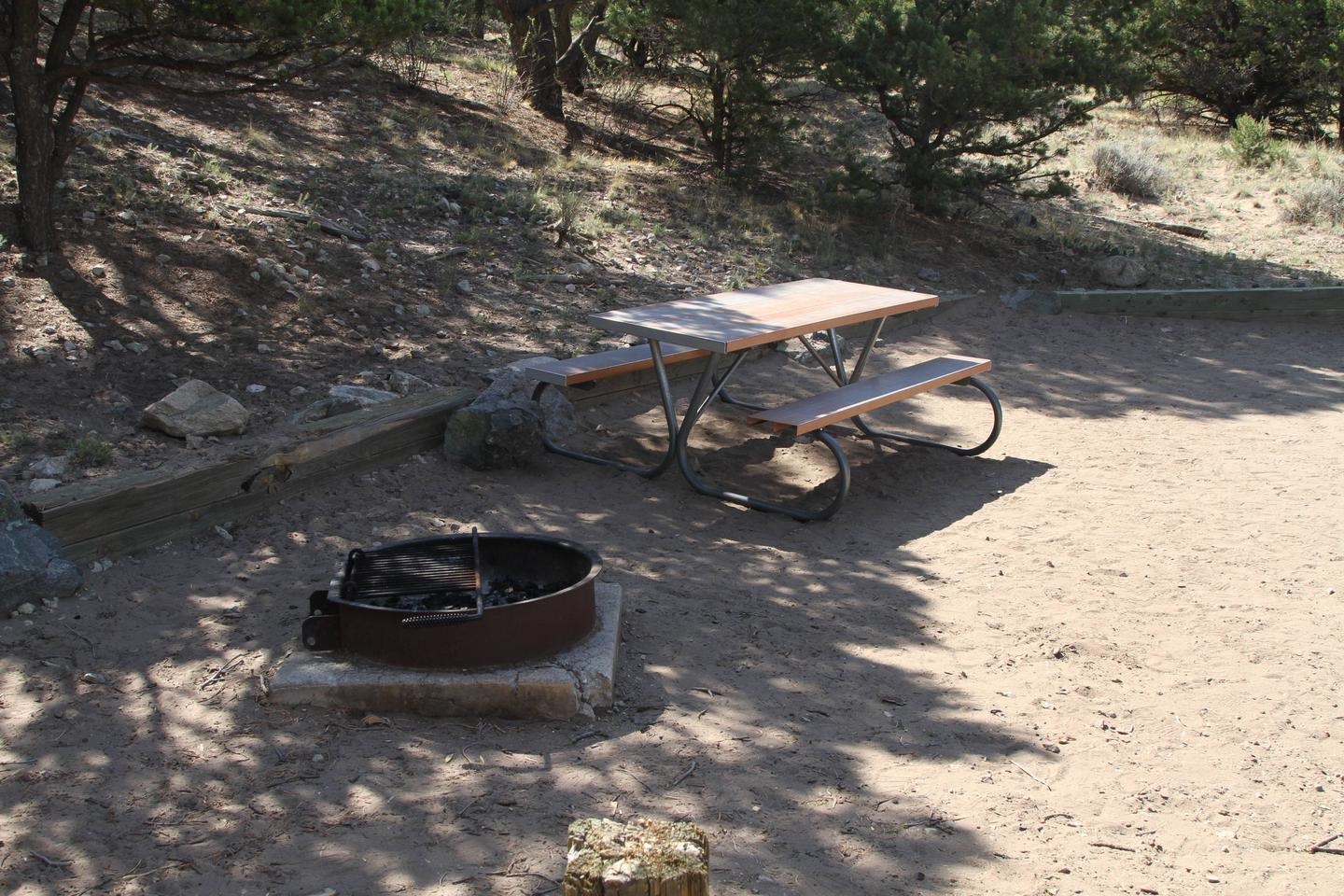 Site #61, Pinon Flats Campground
