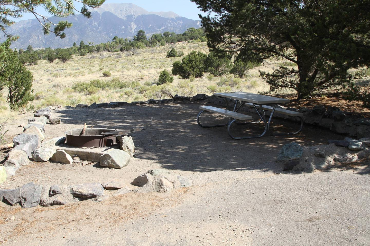 Site #64, Pinon Flats Campground
