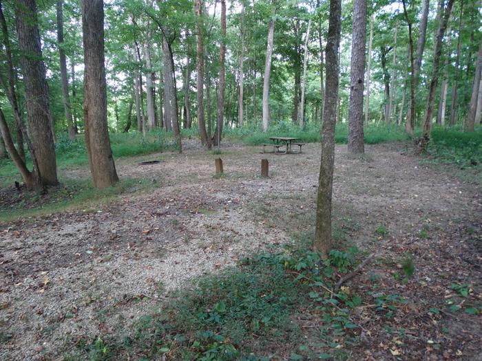 Markham Springs Site 9