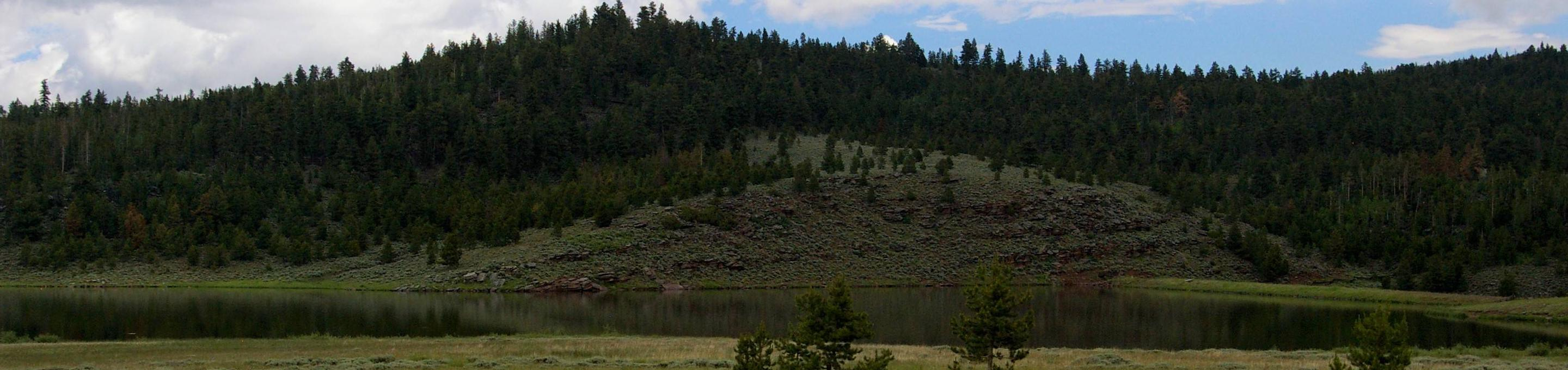 Lake with green grassyh banks and mountain with pines in the background.Browne Lake
