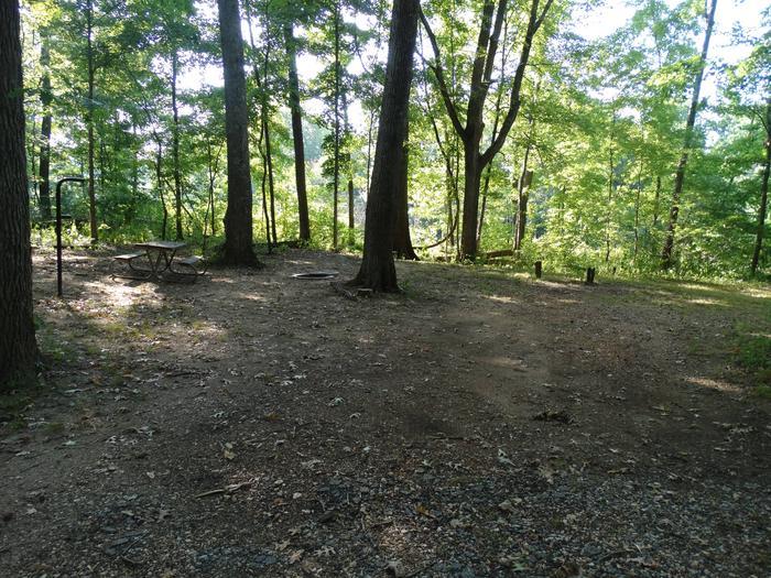 Markham Springs Site 20