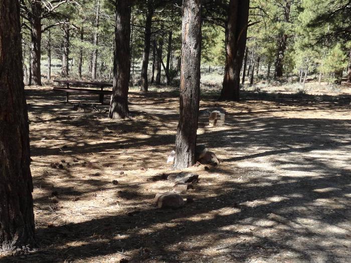CampgroundCampsite 3