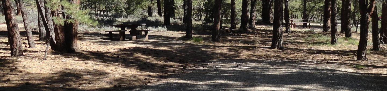 CampgroundCampsite 4
